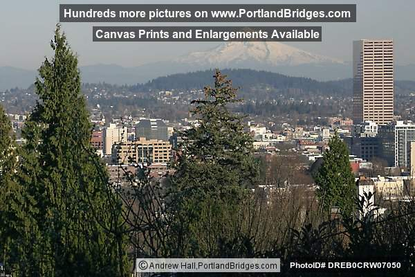 Mt. Hood, US Bancorp Tower, Trees (Portland, Oregon)