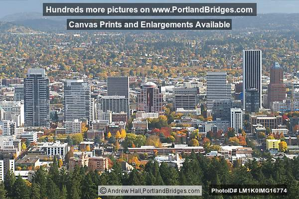 Downtown Buildings from Pittock Mansion (Portland, Oregon)