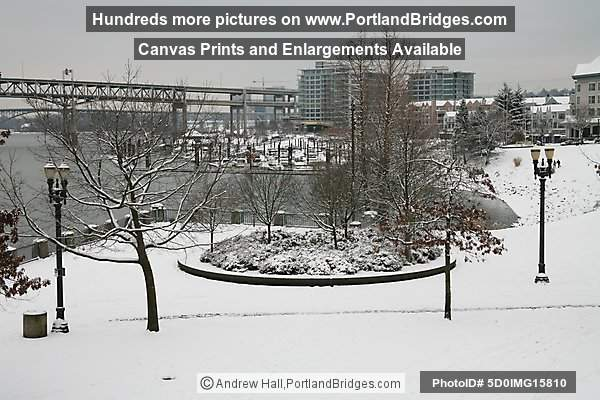 Portland Snow, Tom McCall Waterfront Park
