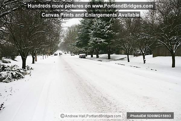 Portland Snow, Knott Street, Irvington Neighborhood