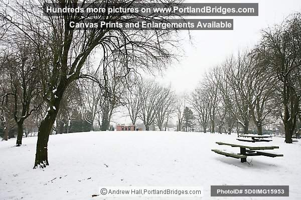 Portland Snow, Irving Park, Northeast Portland