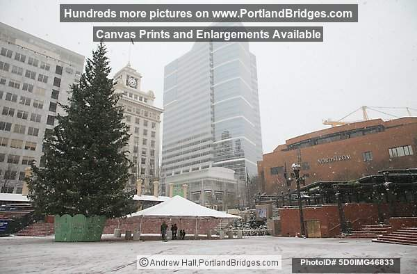 Portland Snow, 2008, Pioneer Court House Square, Christmas Tree