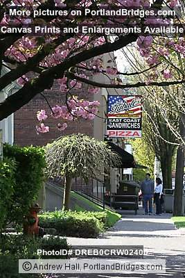 Northwest Portland, Tribute's Pizza, Spring Blossoms