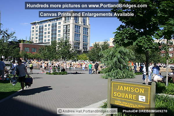 Pearl District, Jamison Square Park, Sunshine (Portland, Oregon)