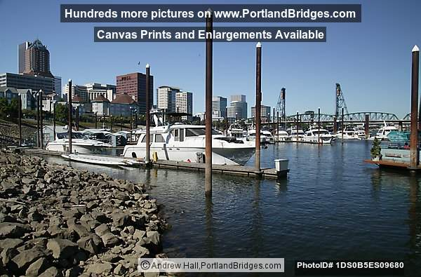 Riverplace Marina, Daytime (Portland, Oregon)