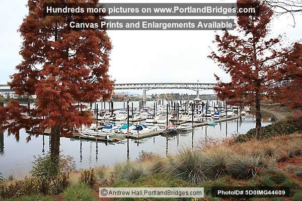 Riverplace Marina, Tom McCall Waterfront Park (Portland, Oregon)
