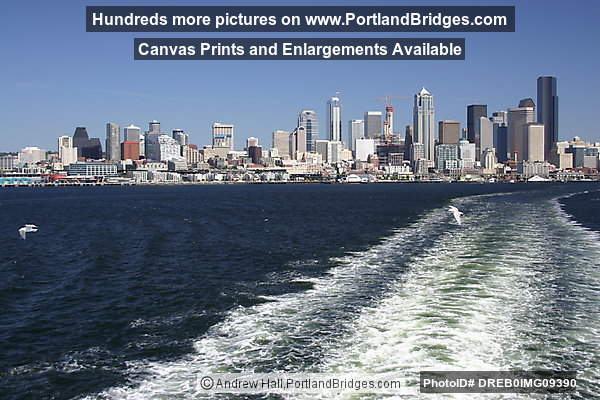 Seattle Cityscape, Elliot Bay