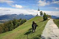 Drazgose Jamnik Kropa Slovenia <i>(33 images) - shot on 09/20/2011</i>