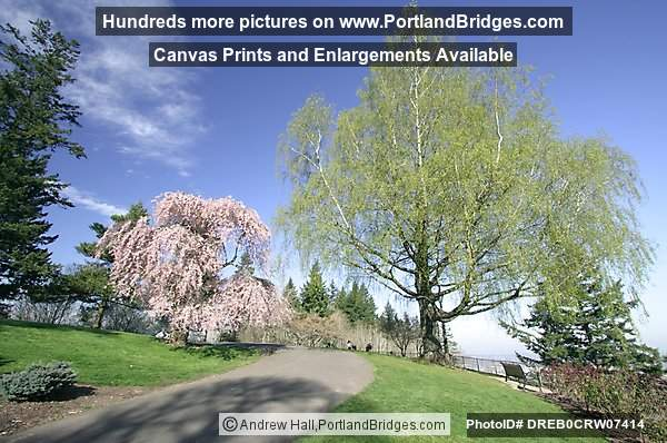 Pittock Mansion Grounds (Portland, Oregon)