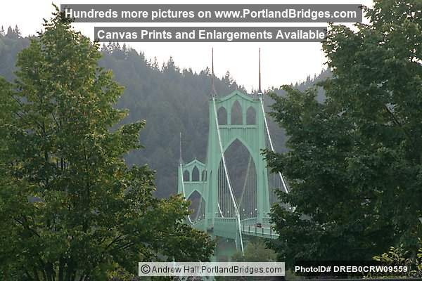 St. Johns Bridge Through the Trees