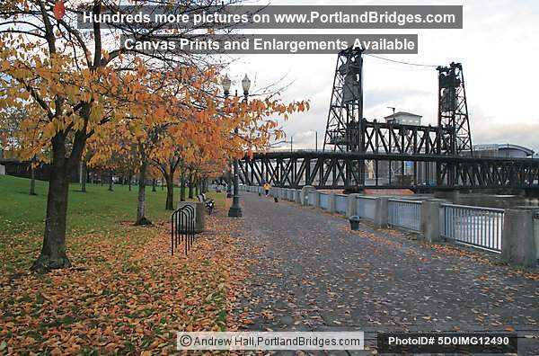Steel Bridge, Fall Leaves (Portland, Oregon)