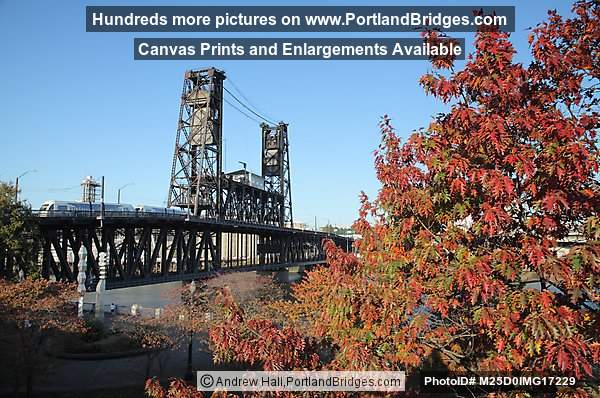 Steel Bridge, Fall Leaves, MAX Train, Portland