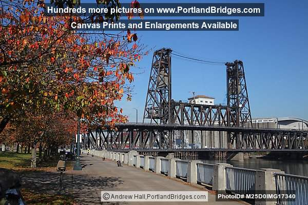 Steel Bridge, Fall Leaves, Tom McCall Waterfront Park, Portland