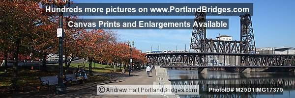 Steel Bridge, Fall Leaves, Panorama (Portland, Oregon)