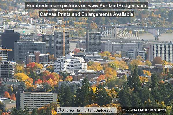 PSU area, Tilikum Crossing from Pittock Mansion (Portland, Oregon)