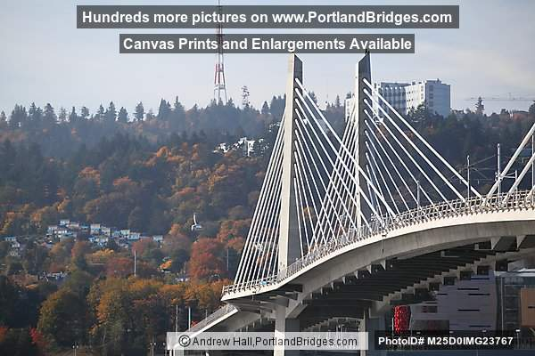 Tilikum Crossing (Portland, Oregon)