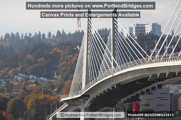 Tilikum Crossing, OMSI (Portland, Oregon)