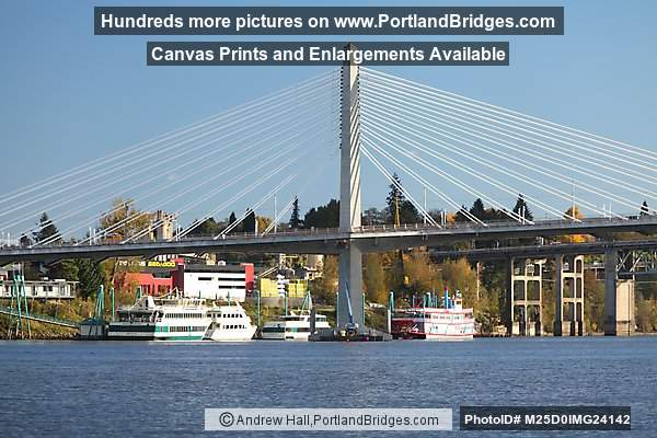Tilikum Crossing, Willamette River (Portland, Oregon)