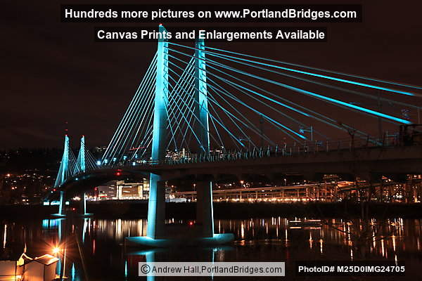Tilikum Crossing at Night, Lit Up (Portland, Oregon)