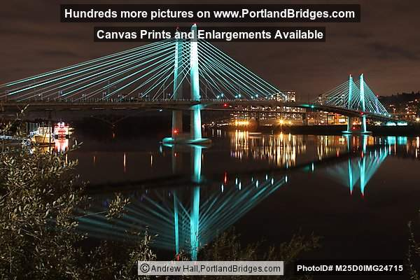 Tilikum Crossing at Night, Lights On