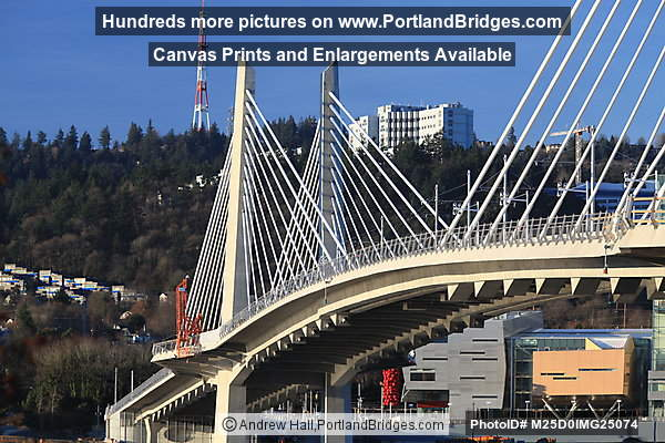 Tilikum Crossing, View of OHSU, Morning (Portland, Oregon)