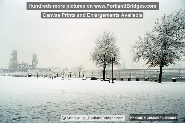 Tom McCall Waterfront Park, Portland Snow