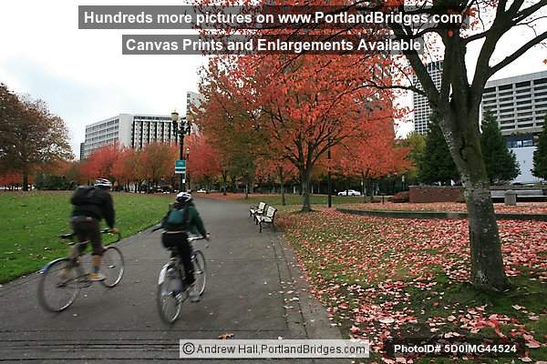 Tom McCall Waterfront Park, Fall Leaves, Cyclists (Portland, Oregon)