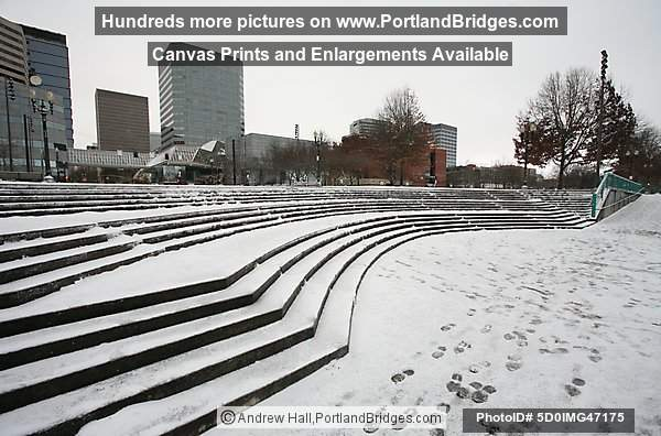 Snow, Tom McCall Waterfront Park, 2008 (Portland, Oregon)