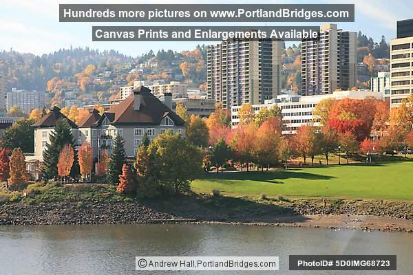 Waterfront, Fall Leaves, Riverplace Hotel (Portland, Oregon)