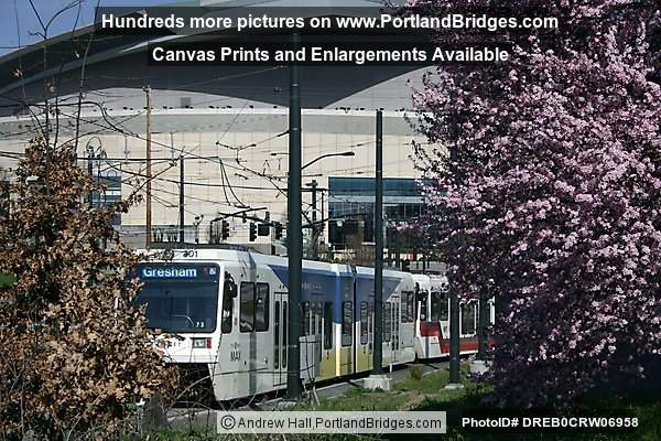 Spring Blossoms, MAX Train, Moda Center (former Rose Garden Arena) (Portland, Oregon)