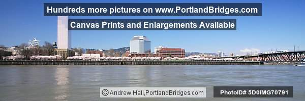 Willamette River, Waterfront Blossoms, MAX Train, US Bancorp Tower (Portland, Oregon)