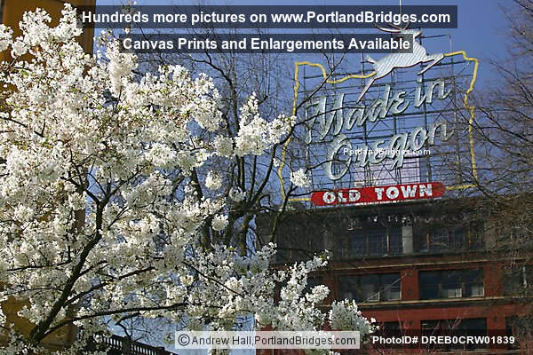 Made In Oregon Sign, Spring Blossoms (Portland, Oregon)
